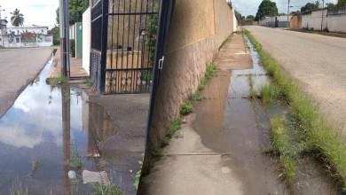 Photo of Vecinos de la urbanización Monte Rico afectados por botes de aguas blancas