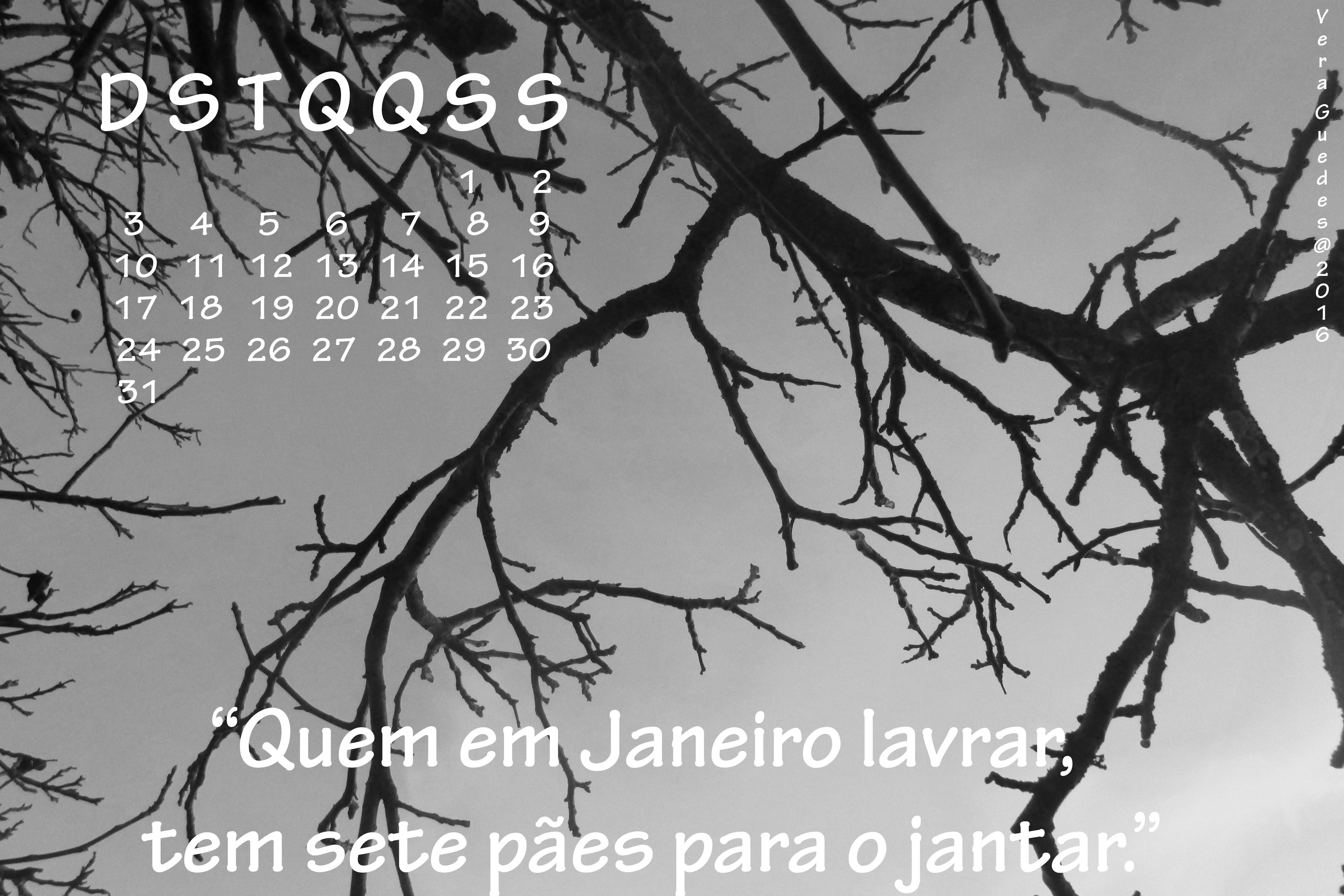 Vamos entrar em Janeiro!!!