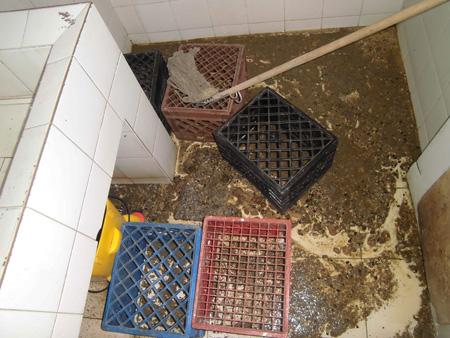 Las cloacas se desbordaron en los baños