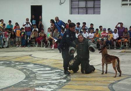 Los canes mostraron técnicas de obediencia, ataque y protección. FOTO: Irbel Useche