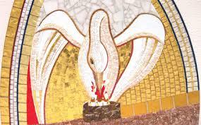 pelicano islam