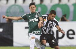 Defesa falha, e Palmeiras empata com o Botafogo