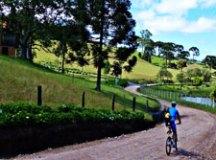 Circuito das Araucárias tem natureza, história e ciclismo em SC