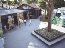Casa do Hip Hop reorganiza atividades e oferece mais oficinas e cursos