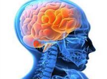 Metade dos casos de transtorno mental surge até os 14 anos, alerta OMS