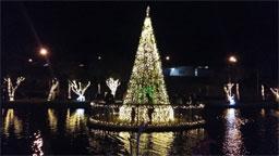 Vinícola Góes abre seu calendário para comemorações natalinas