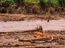 Lama da barragem de Brumadinho encontra o Rio Paraopeba: barragem de Nova Lima tem a mesma estrutura da que se rompeu no final de janeiro.  Foto: arquivo