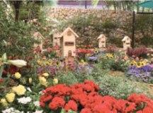 Expoflora, a festa das flores, começa na sexta