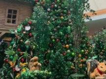 Chegada do Papai Noel movimenta shoppings da região