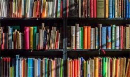 Brasil perdeu 4,6 milhões de leitores entre 2015 e 2019. Foto: Divulgação/Cultura RJ