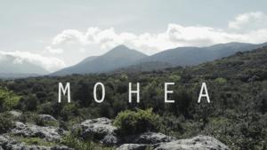 El documental científico que representa a Ronda en su propia Bienal.