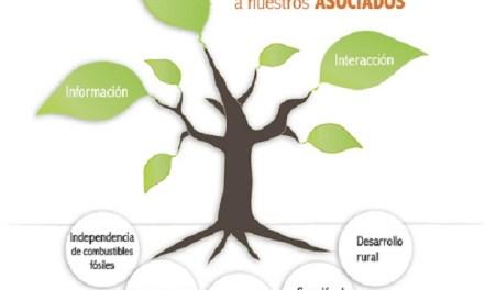 I Seminario Chileno-Español de Biomasa