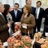 Gobierno lanza programa para potenciar a Chile como líder en la exportación de alimentos saludables innovadores