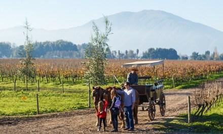 Chile promueve sus atractivos turísticos en ANATO, importante feria turística internacional