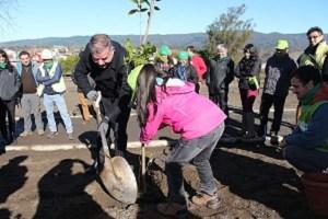 CMPC y autoridades locales realizan primera plantación participativa en Nacimiento