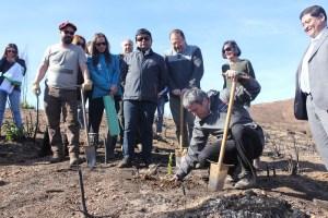 Fundación Reforestemos lanzó en terreno la campaña que busca reforestar con bosque nativo, las regiones de O'Higgins y del Maule