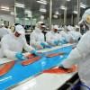 Blumar Seafoods presenta primer Reporte de Sostenibilidad iniciativa inédita en la industria pesquera nacional