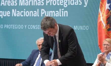 WWF Chile celebra nuevo hito para la conservación de la naturaleza en el país