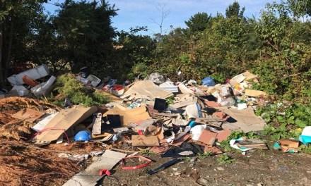 Puerto Varas busca soluciones para disminuir la contaminación medioambiental