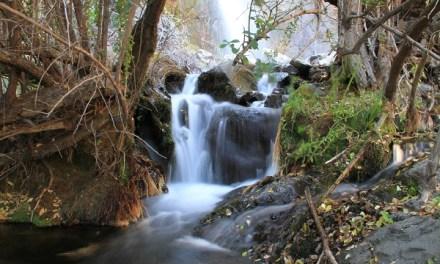 Asociación Parque Cordillera celebrará el Día del Agua con trekking gratuito
