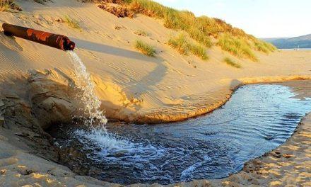 Día mundial del agua: más desafíos que nunca