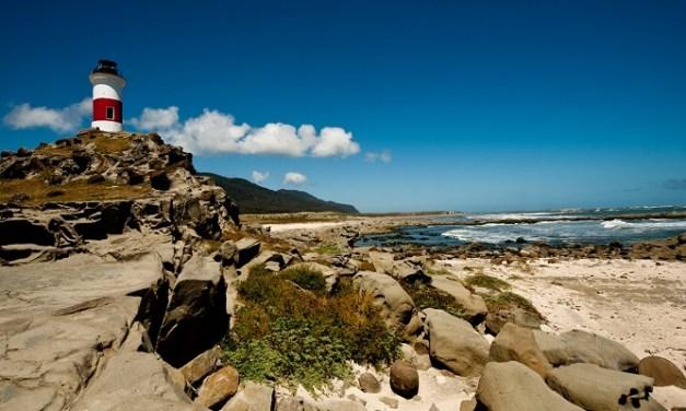 Limpieza de la Isla Mocha construirá la primera tabla de surf de plástico reciclado