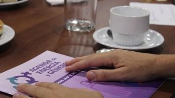 """Primer Encuentro del Capítulo Chileno del """"Council of Women in Energy & Environmental Leadership"""" establece prioridades con foco de género en los sectores de energía y medio ambiente"""