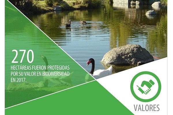Grupo CAP presentó su décimo reporte de sustentabilidad, destacando avances en diferentes áreas de la compañía