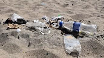 En el Día de la Tierra, WWF Chile llama a reducir la producción, uso y consumo de plásticos