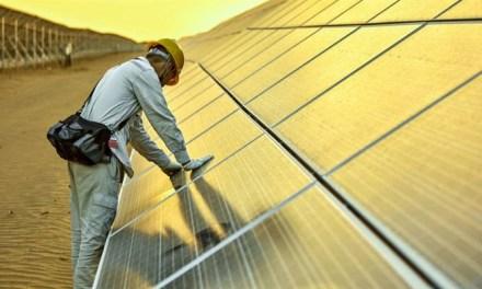 Energía renovable alcanza 10,3 millones de empleos a nivel mundial en 2017
