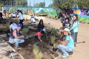 Niños de Coaniquem tendrán jardín sanador para complementar su recuperación