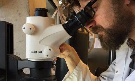 Innovador científico chileno crea piel fotosintética capaz de regenerar tejidos