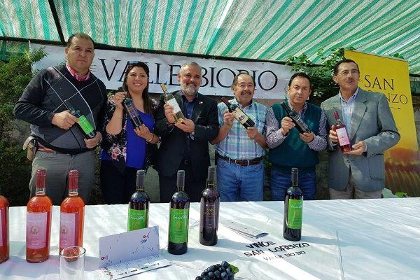 Acuerdo de Producción Limpia impulsará  la competitividad de viñateros del Valle Biobío