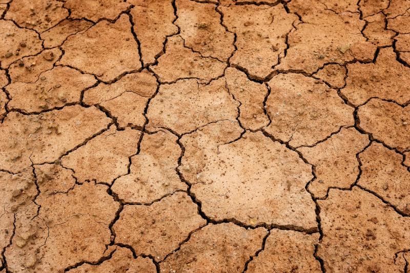 El desafío chileno de ser una potencia alimentaria está siendo afectado por la escasez hídrica