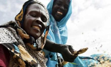 Cinco motivos por los que la acción sobre el clima necesita a las mujeres