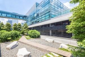 ¿Cómo los edificios pueden contribuir a la disminución del efecto invernadero?