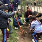 Fundación Reforestemos lanza su nuevo proyecto #ReforestemosEduca
