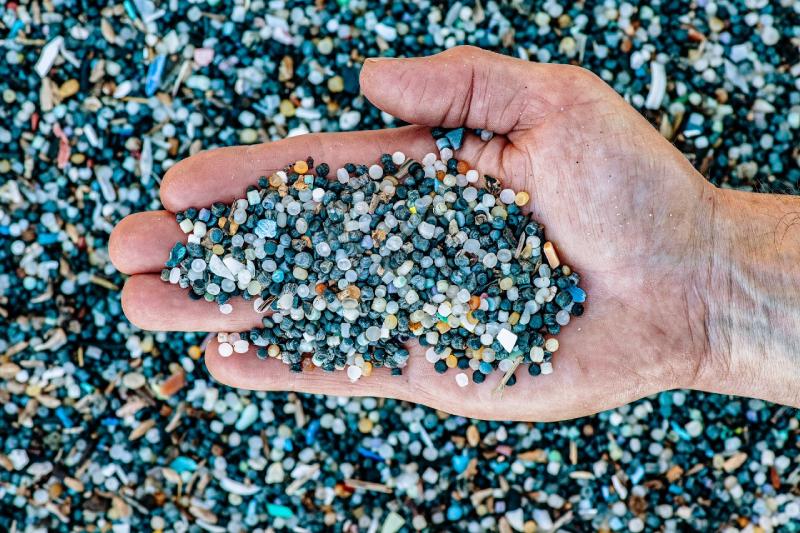 Los seres humanos ingerimos por semana el plástico equivalente a una tarjeta de crédito según informe de WWF