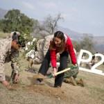 Ejército lanza programa de forestación y reafirma su compromiso con el medio ambiente en el marco de la COP25