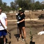 Quix ayuda a la naturaleza con la reforestación en Parque Las Palmeras