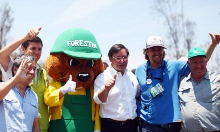 6D IT'S NOW realizó la reforestación más grande de Chile en el Parque Metropolitano Cerros de Renca
