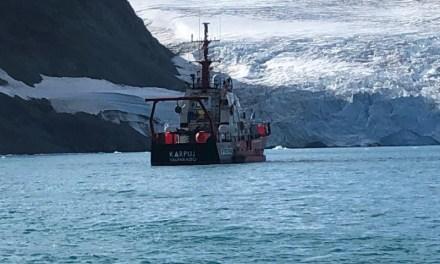 Ola de calor en la Antártica: un termómetro atareado