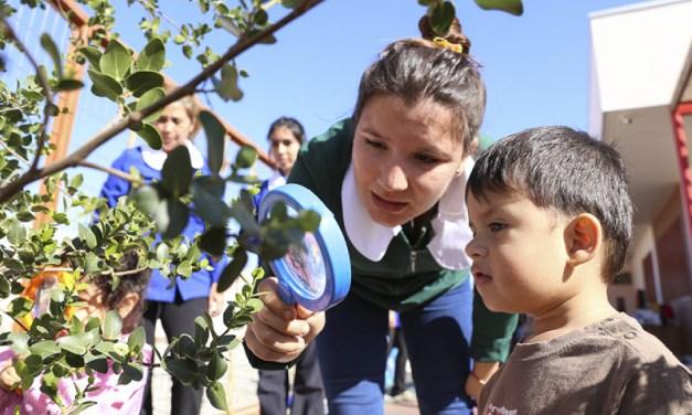 """""""Educación para el Desarrollo Sustentable"""", el libro de Junji que nos enseña a cuidar nuestro planeta desde la primera infancia."""