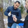 Científicos chilenos confirmaron el origen de la levadura de la cerveza lager en la Patagonia