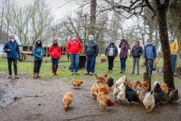 Comunidad indígena desarrolla innovador proyecto de incubación de huevos a través de Energía Renovable No Convencional