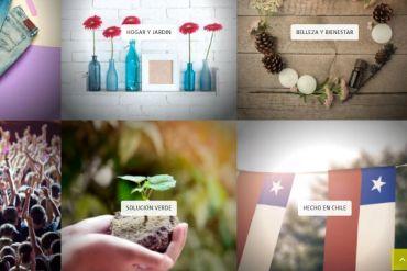 8 alternativas de consumo consciente y sustentables de pymes que puedes encontrar en www.apanotupyme.cl