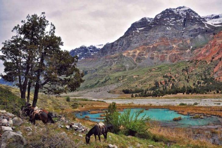Reserva Nacional Río de los Cipreses vuelve a abrir sus puertas al público