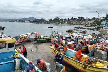 Subpesca, IFOP y Fundación Chile elaboran plan de acción para reducir las pérdidas y desperdicios de alimentos en caletas