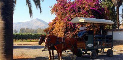 Cuatro actividades al aire libre a menos de 90 minuto de Santiago