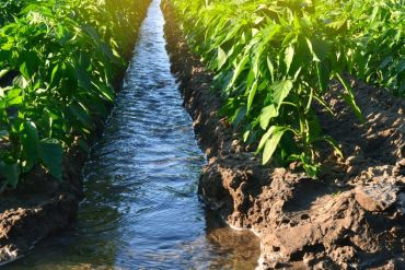 """Con """"Certificado Azul"""" empresas contribuirán a la seguridad hídrica del país"""
